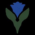 cropped-logo-bluerose-1.png